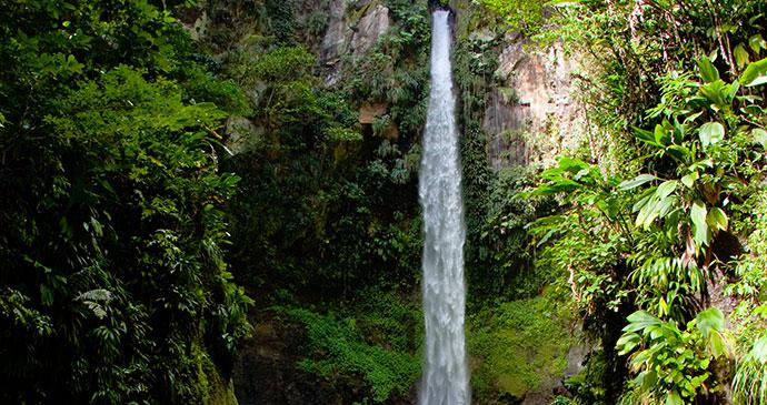 Sari Sari Falls Dominica © Paul Crask