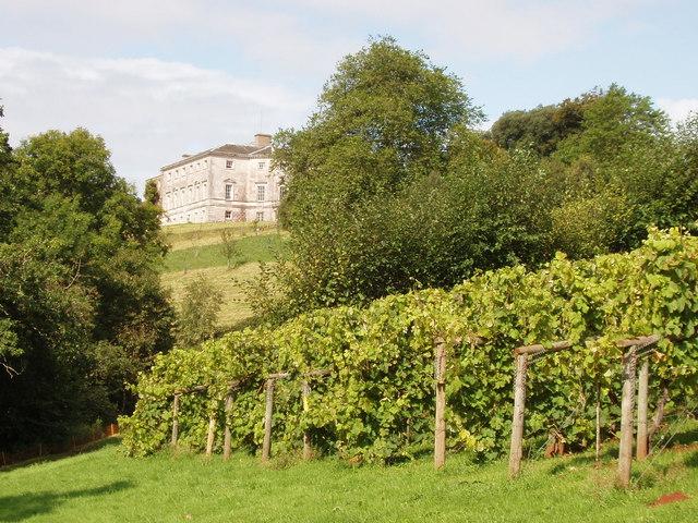 Sharpham House and Vineyard Devon by David Hawgood Wikimedia Commons best vineyards england