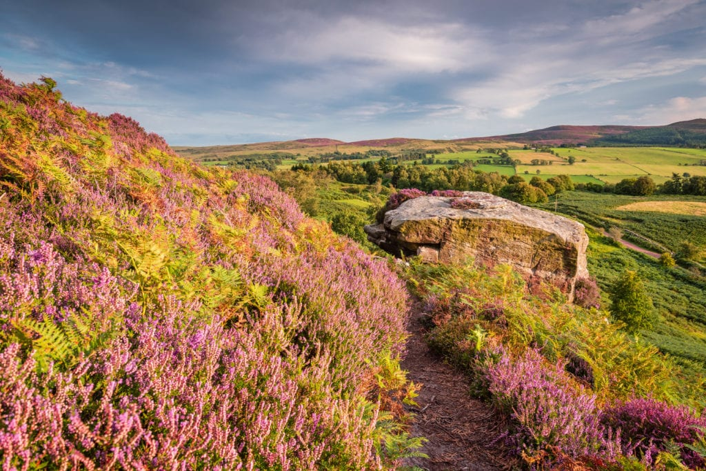 A hiker's paradise: 5 of the best Northumberland walks