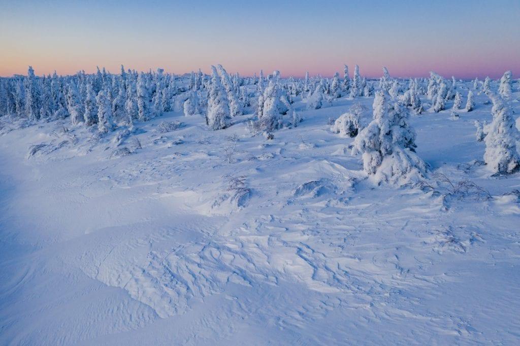 Enchanted Forest Alaska otherworldly landscapes