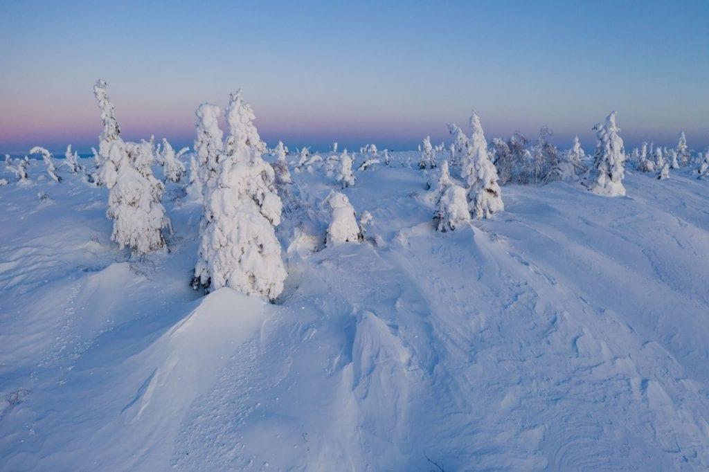Enchanted Forest Alaska