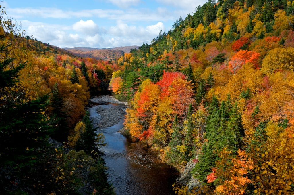 Cape Breton Highlands National Park, Nova Scotia Canada by Nova Scotia Tourism best forests in the world