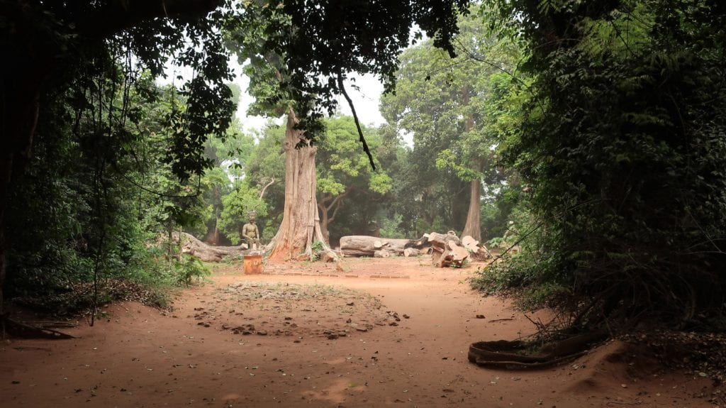 Kpasse forest, Benin by Kulttuurinavigaattori, Wikimedia Commons