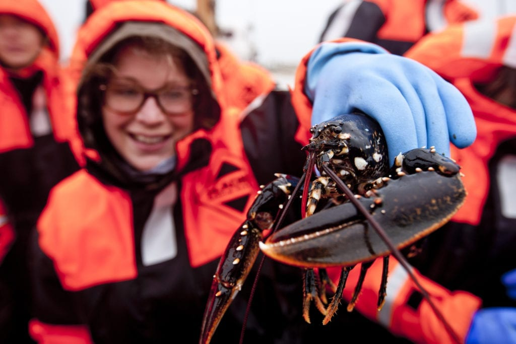 Lobster seafood safari West Sweden by West Sweden Tourism