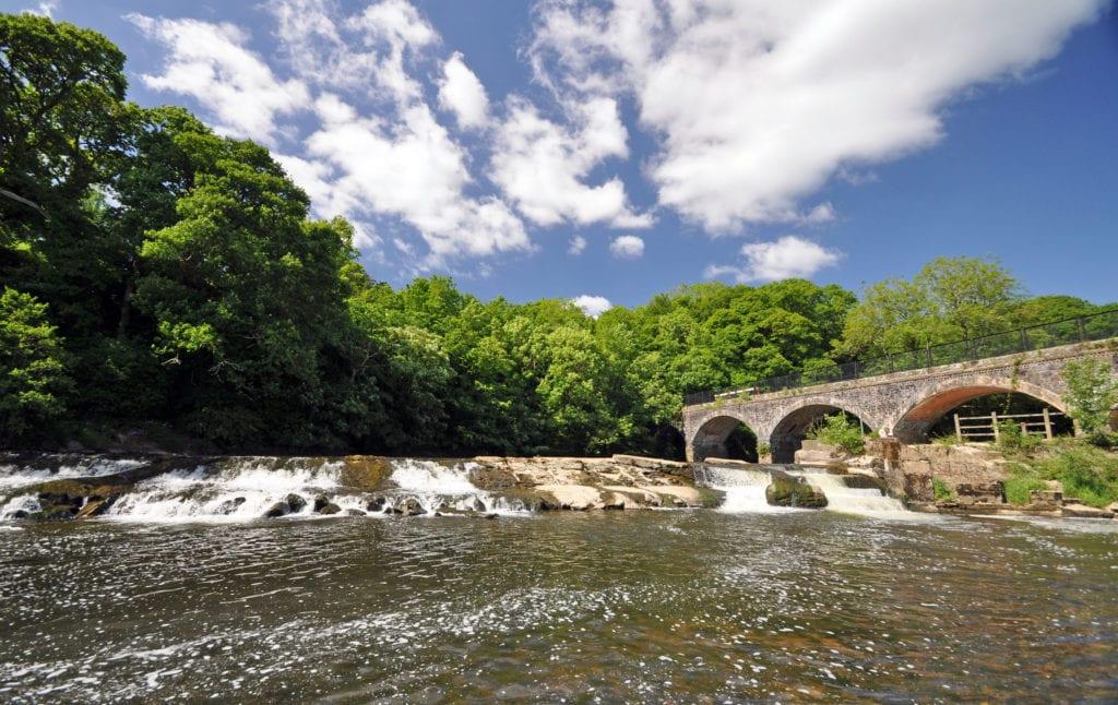 Tarka Trail North Devon UK davidelliotphotos, Shutterstock