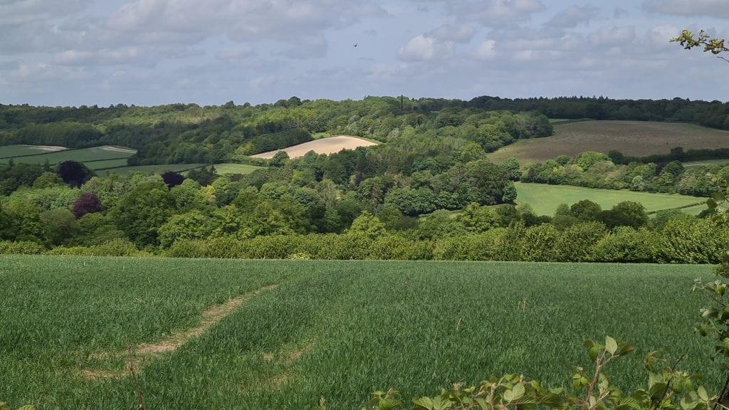 Beautiful fields Hampden house