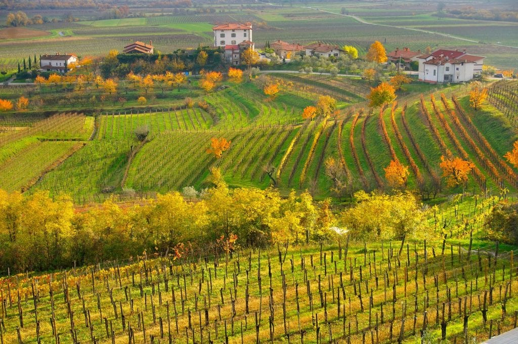The Collio, vineyards, wine, Italy's finest attractions by Luciano Mortula LGM, Shutterstock Italy travel lockdown