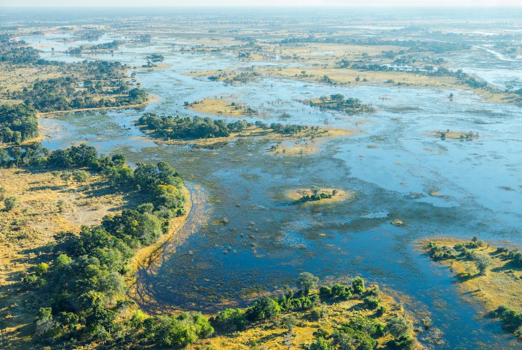 Okavango Delta Botswana by Vadim Petrakov Shutterstock