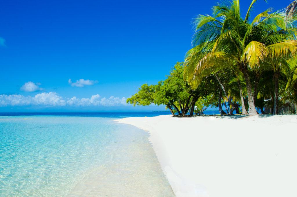 Caye beach Belize by Simon Dannhauer Shutterstock