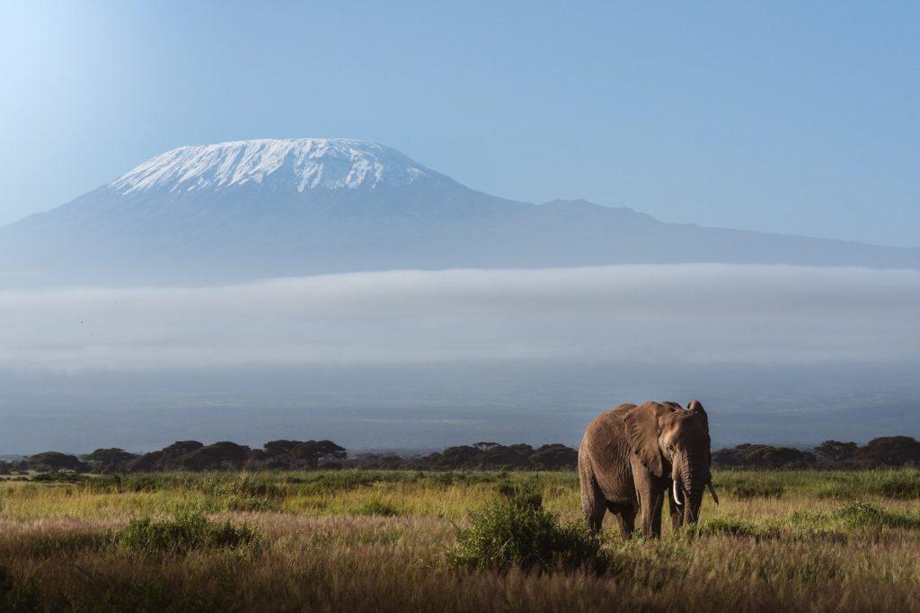 Kilimanjaro Tanzania by James Eades Unsplash