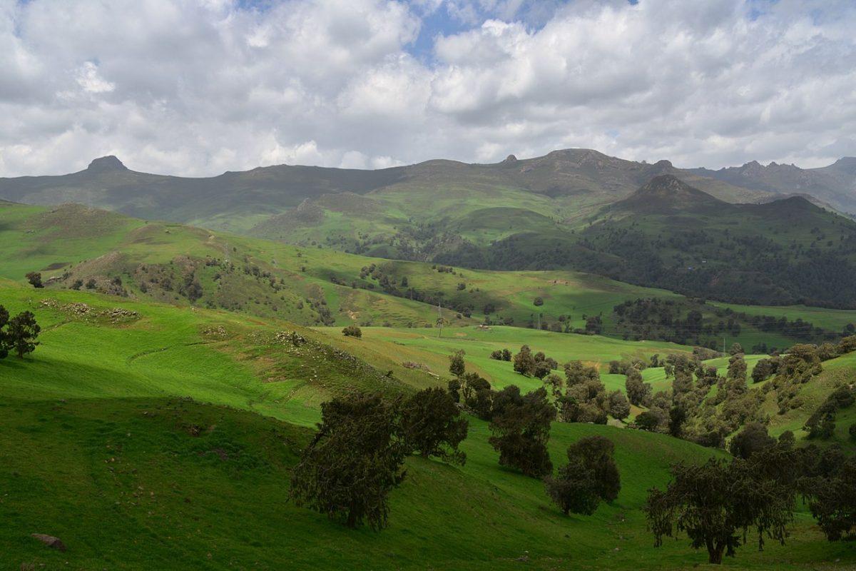 bale mountains, ethiopia, Richard Mortel, Wiki