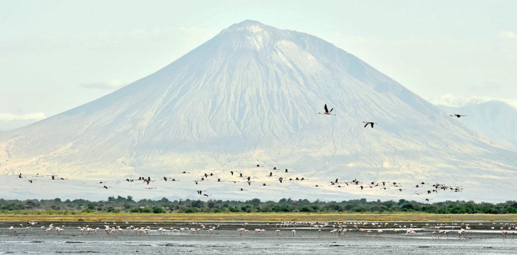 Lake Natron and Ol Doinyo Lengai Volcano Tanzania by Sergey Uryadnikov Shutterstock
