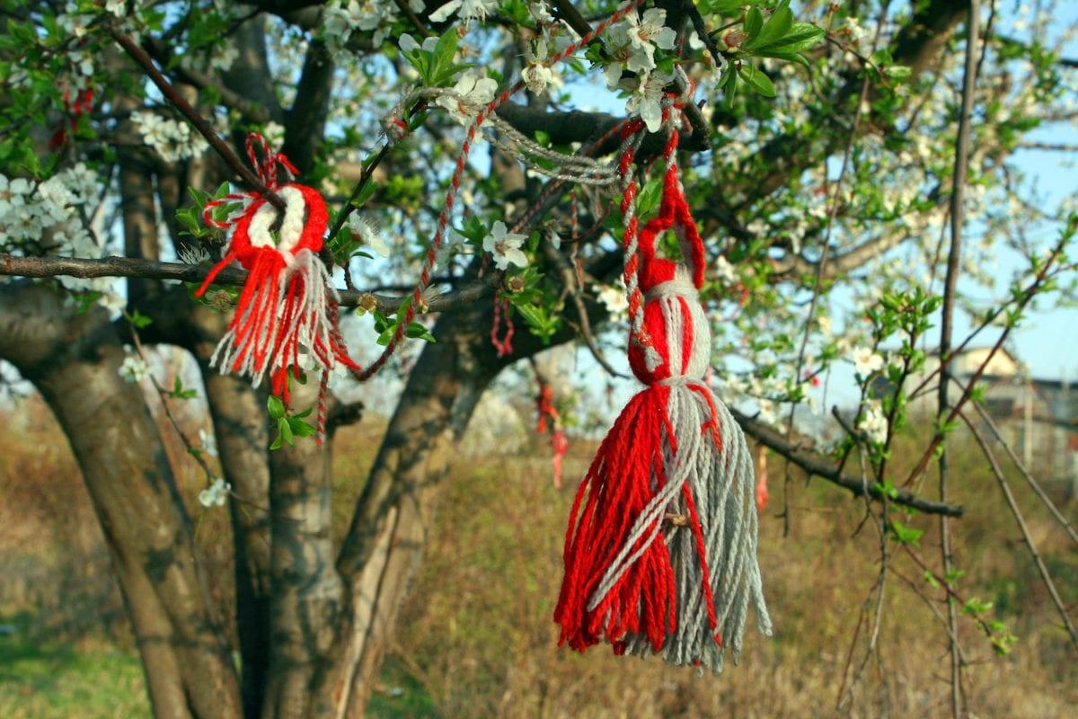Martenitsa Bracelet Tree Bulgaria by Gustav Wikimedia Commons