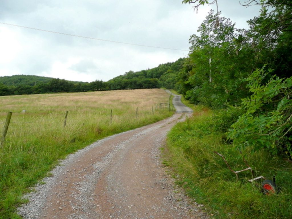 Buckholt Wood, Cranham Common, Cotswolds, Jonathan Billinger