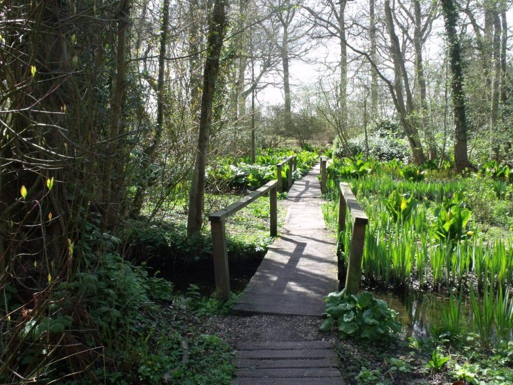 Fairhaven Woodland and Water Garden Norfolk by Elliott Brown Flickr