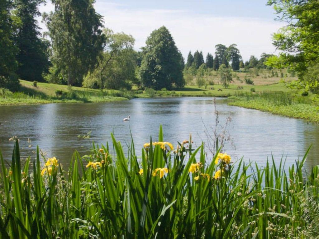The Arboretum, Yorkshire, Harry Kingman