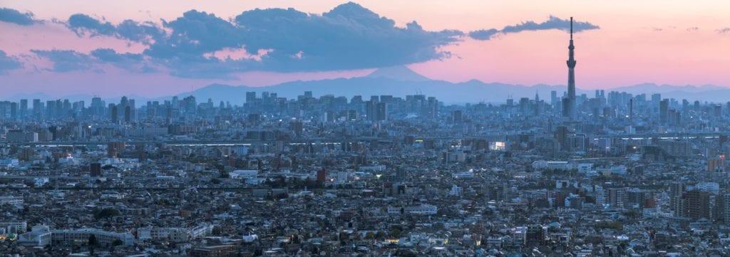 View of the city against the backdrop of Mount Fuji, Tokyo, Julian Elliott