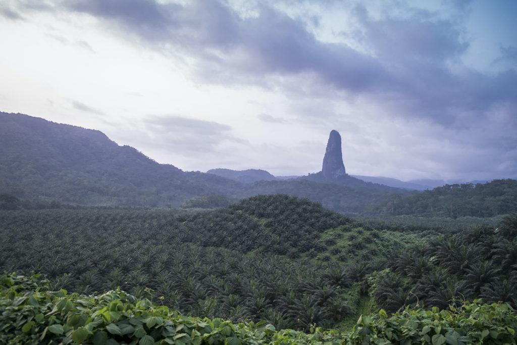Pico Cao Grande in rainforest Sao Tome Principe by Andre Silva Pinto Shutterstock