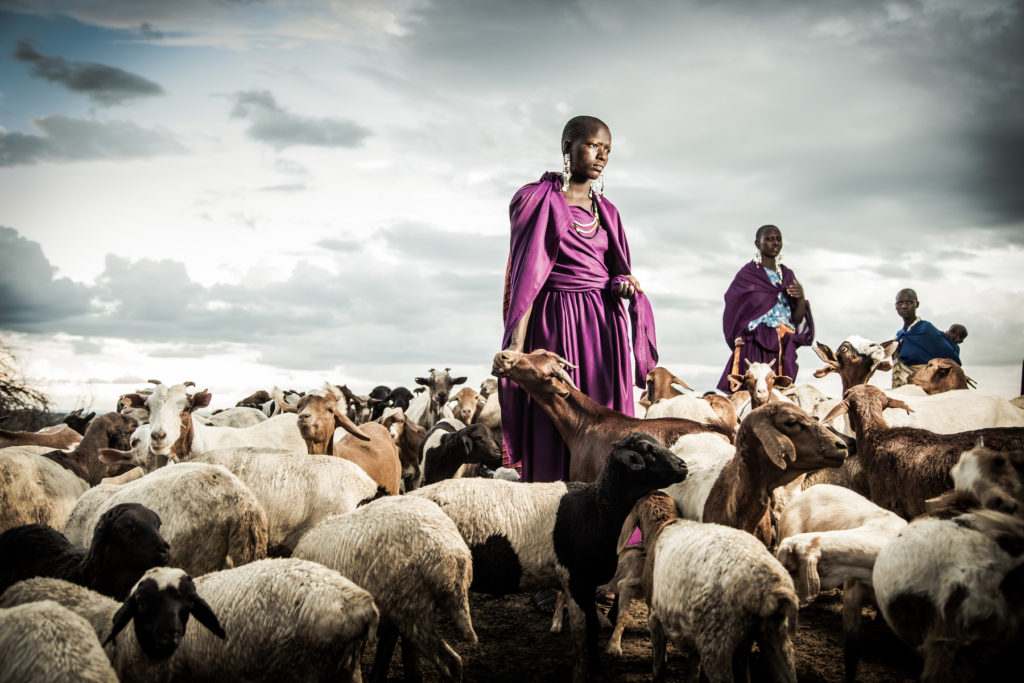 In photos: the Maasai & East Africa