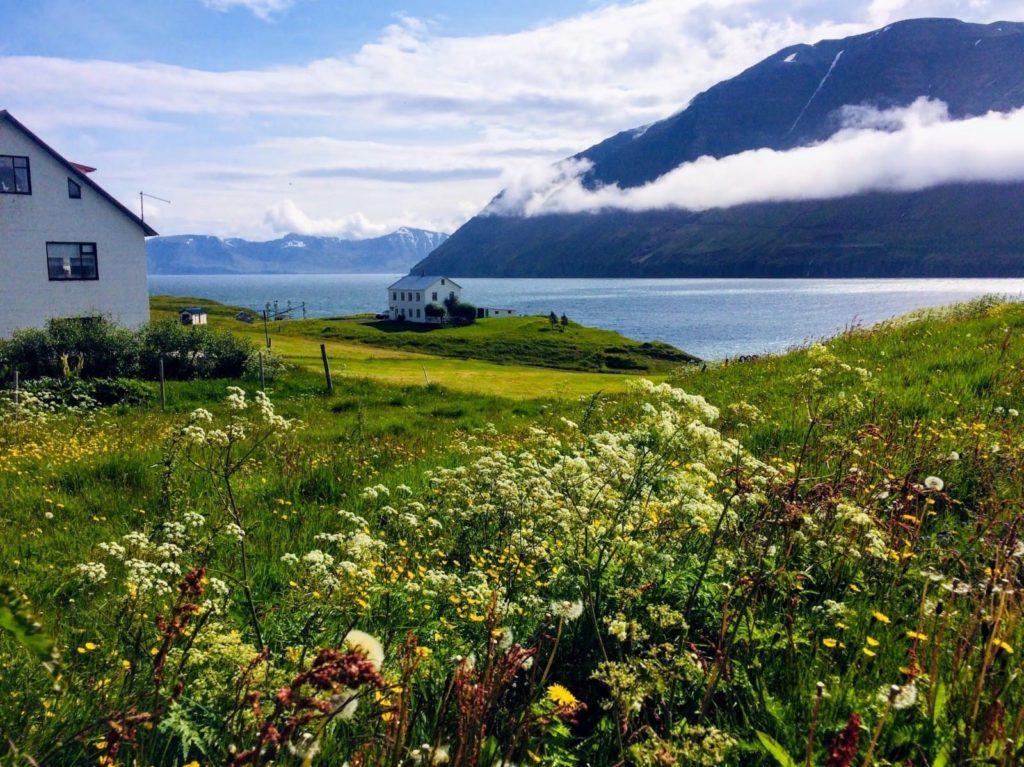 Arctic Coast Way Iceland by Anna Moores