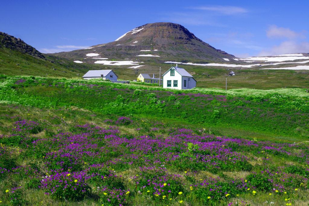 Hornstrandir National Park Iceland by Bildagentur Zoonar GmbH Shutterstock