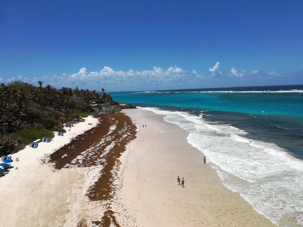 Crane Beach, Barbados by Clump, Wikimedia Commons