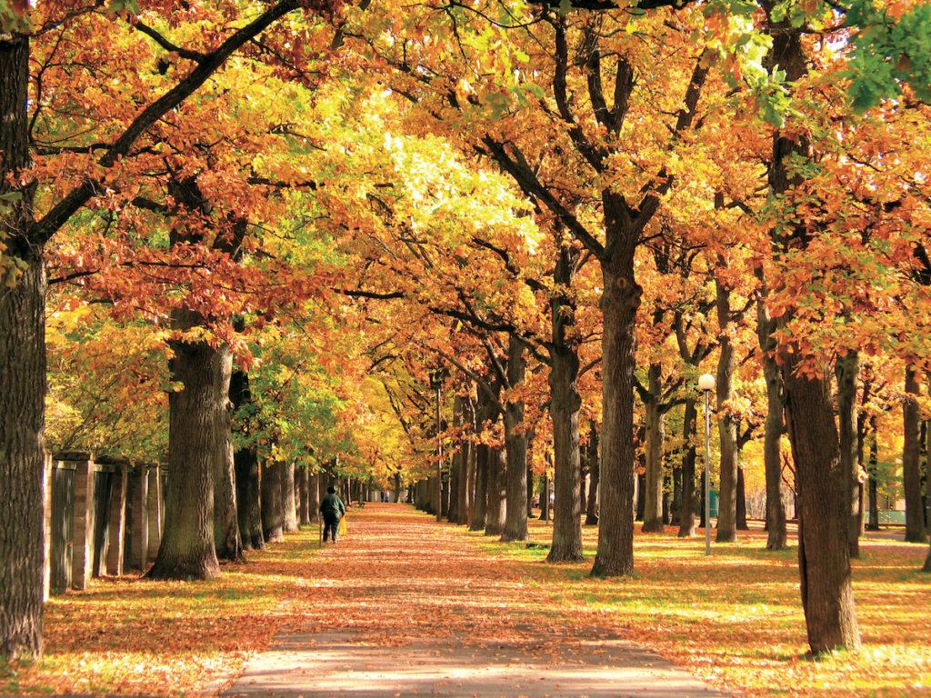 Parnu Park Estonia by Toomas Olev Visit Estonia