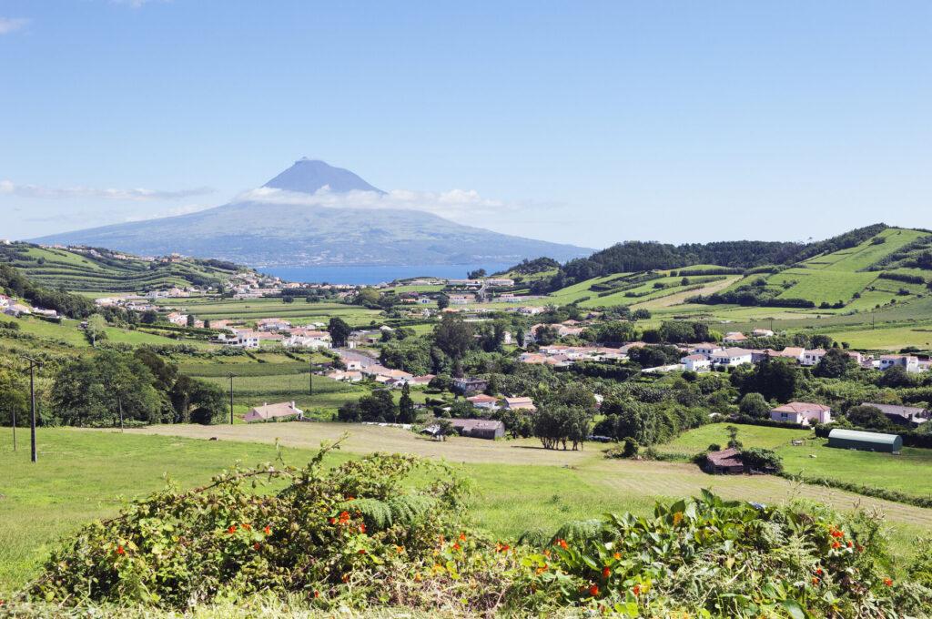 Faial Azores Portugal