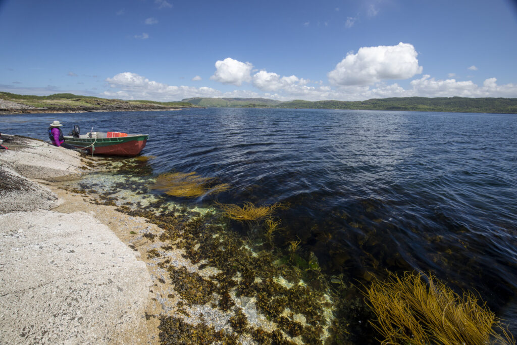 Islets Shuna William Gray