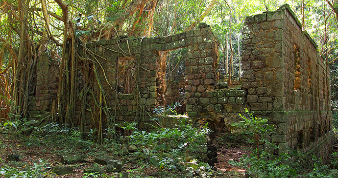 The 18th-century Fort Shirley garrison ruins in the Cabrits National Park  © Paul Crask
