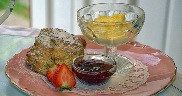 Devonshire cream tea © Hilary Bradt