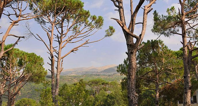 Chouf Mountains, Lebanon © Serge Melki, Wikimedia