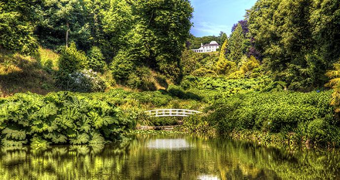 Trebah Garden Cornwall England UK by Rolf E. Staerk Shutterstock