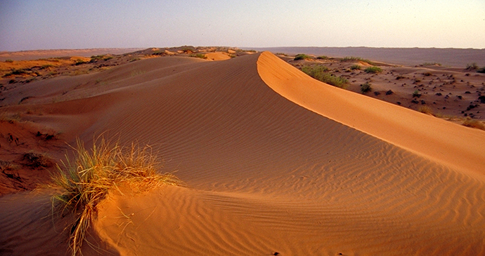 The stunning Wahiba Sands in the Sharqiya Region by Oman Ministry of Tourism
