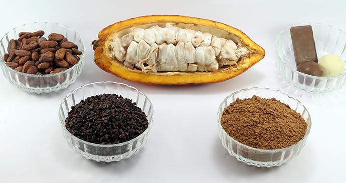 Chocolate ingredients, Grenada © Sandro Salamon, Shutterstock