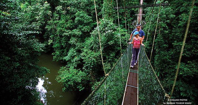 Bridge, Danum Valley, Sabah, Malaysia, Borneo, Asia by Sabah Tourism