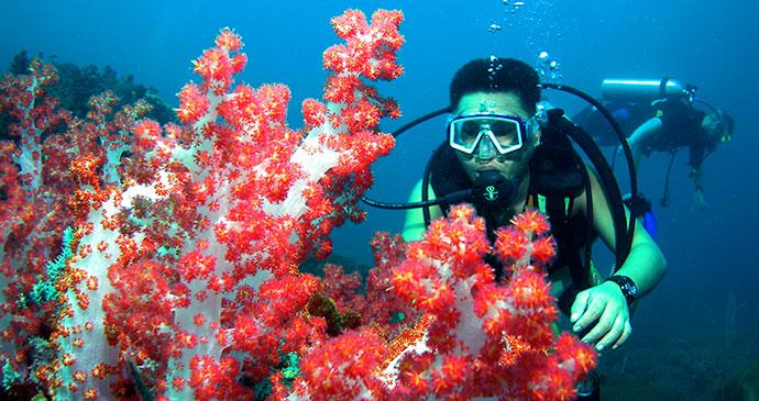 Diving Borneo Sabah Sarawak by Sarawak Tourism