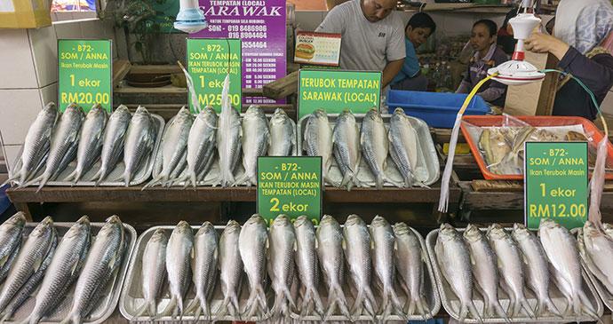 Salted terubok, Brunei, Asia byalphonsusjimos