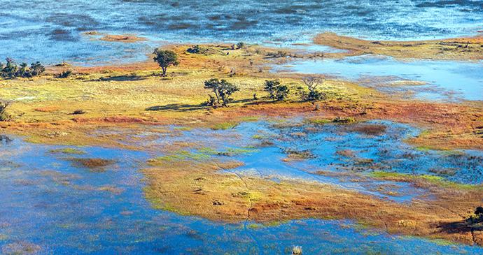 Okavango Delta, Botswana by Vadim Petrakov, Shutterstock