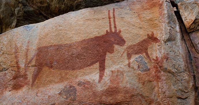 Rock art, Tsodilo Hills, Botswana by Radek Borovka, Shutterstock