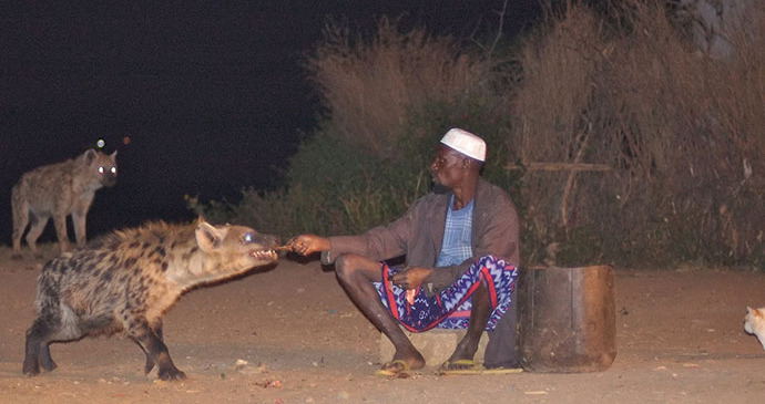 Hyena man Harar Ethiopia by Alan Coogan