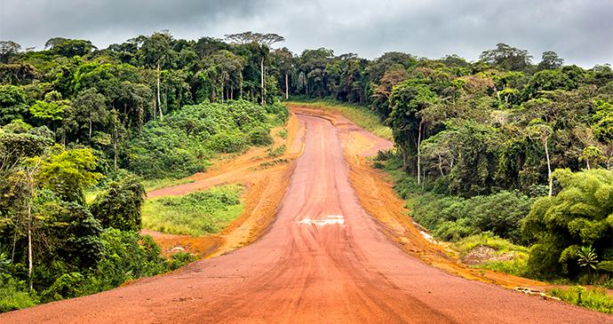 Landscape with Road Gabon by Oleg Puchkov Shutterstock