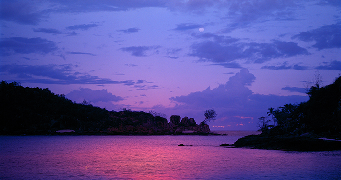 Sunset in Jungle Gabon by Ivanov Gleb Shutterstock