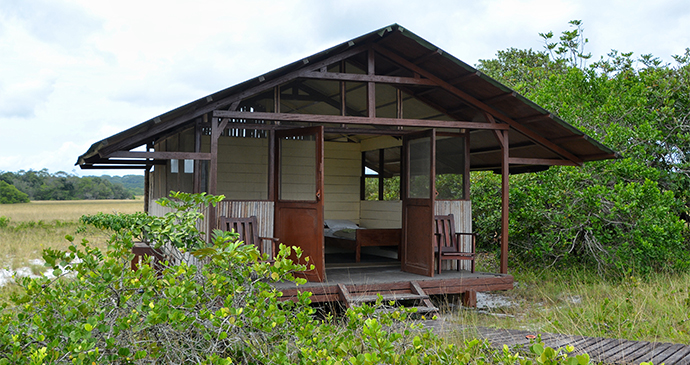 Tassi Camp Hut Exterior Gabon by Stuart Jarvis