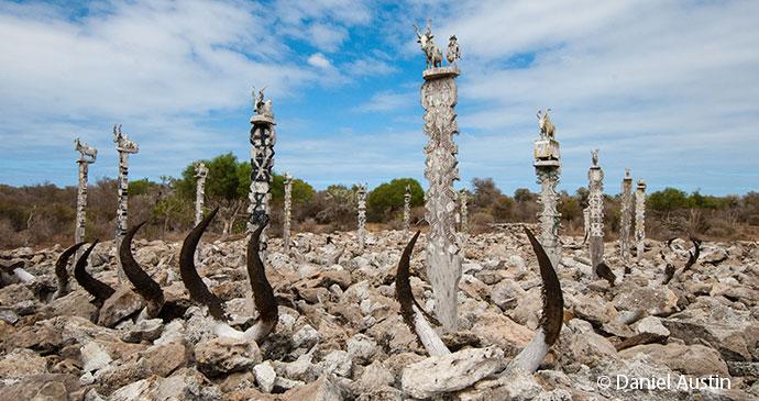 Zebu horns tombs Madagascar by Daniel Austin