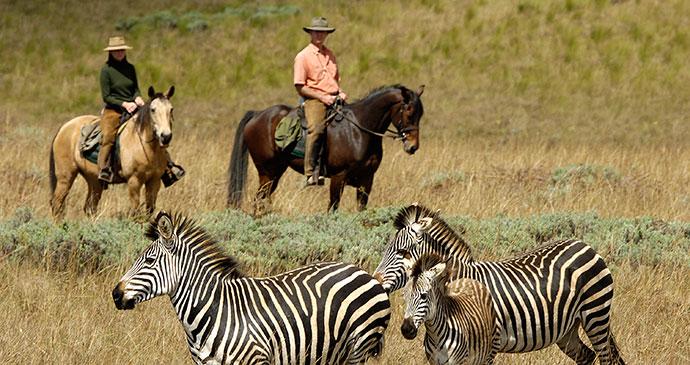 Horseriding Malawi by Malawi Tourism
