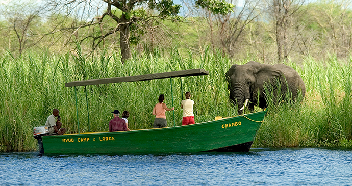 Liwonde National Park, Malawi by Dana Allen, Central African Wilderness Safaris