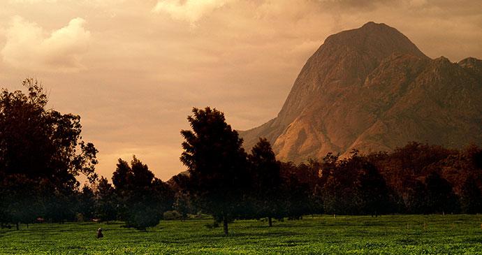 Mount Mulanje, Malawi by Dana Allen, Central African Wilderness Safaris