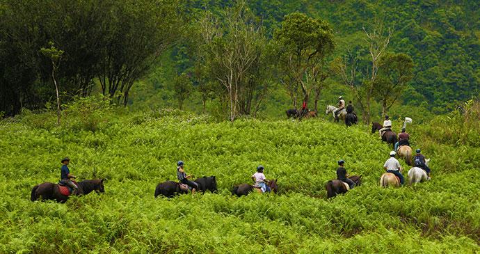 Horseriding in Réunion © Emmanual Virin/ Ile de la Réunion Tourisme