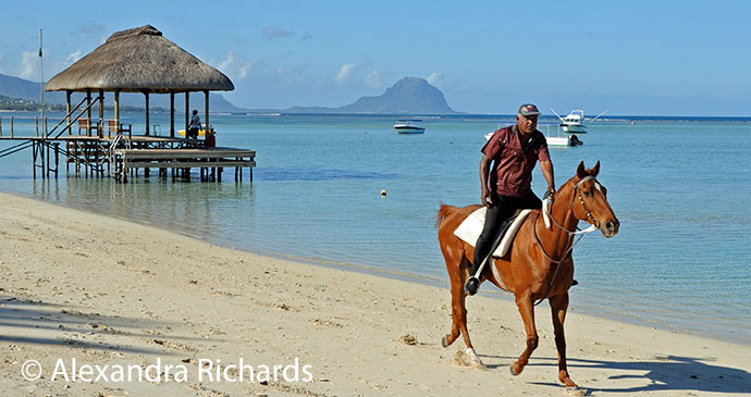 Horseriding Flic en Flac Mauritius by Alexandra Richards